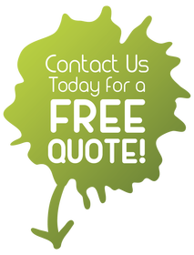 mold remediation quote